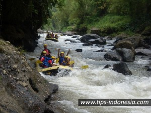 Outbound malang, outbound di malang, game outbound, training motivasi di malang, training motivasi malang, hotel di malang, hotel malang, rafting kasembon, rafting di malang, rafting kaliwatu, hotel di batu malang, travel di malang, travel malang, wisata malang, wisata di malang, wisata batu malang, air softgun songa, rafting di songa, rafting songa, rafting kasembon