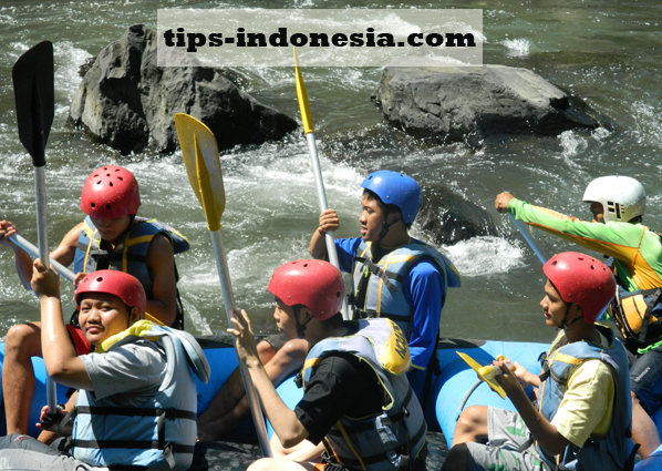 rafting-pacet.com, 081334664876